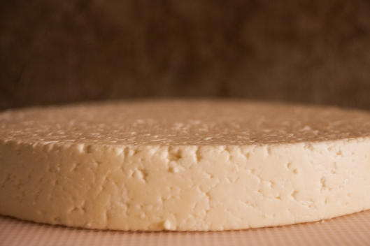 a hybrid cheddared tomme cheese