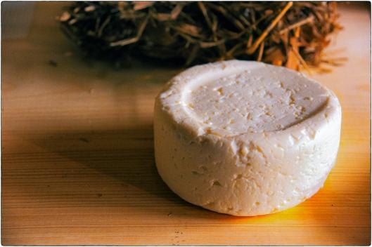 Soft Curd Cheese