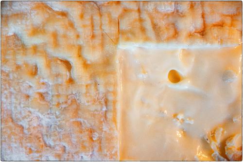 A Fine Central Illinois Brie